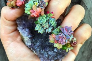 Manicura con plantas